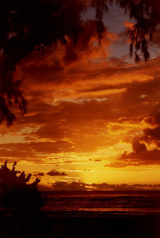 Coucher de soleil à l'Etang-salé