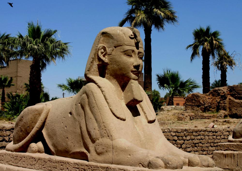 Entre Karnak et Louxor