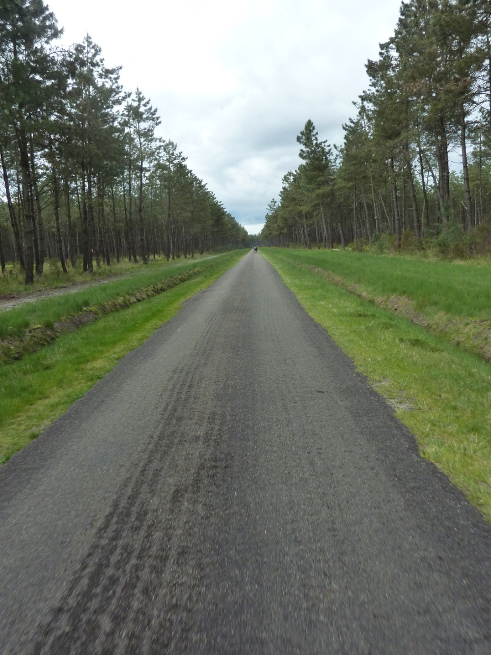 Route landaise