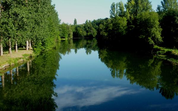 La Dronne, calme rivière
