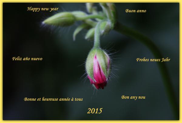 Bonne et heureuse année 2015 à toutes et tous.