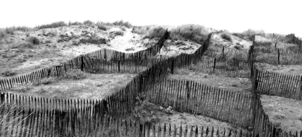 Les palissades dans le sable
