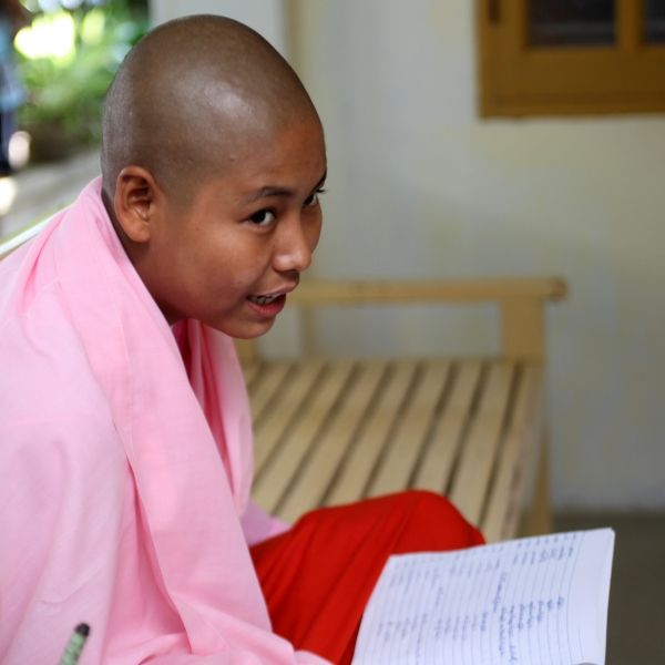 Portrait birman 8