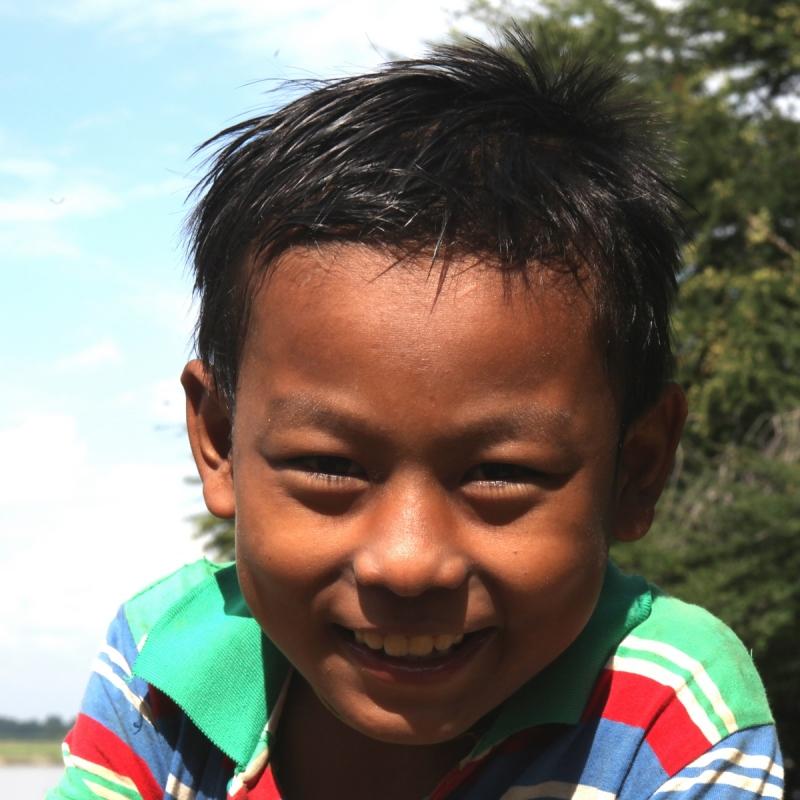 Portrait birman 10