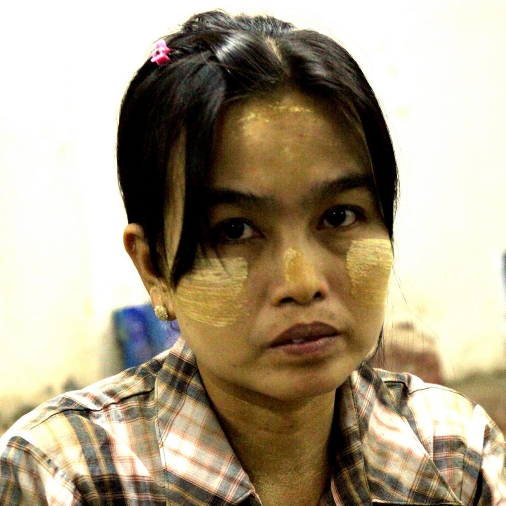 Portrait birman 12