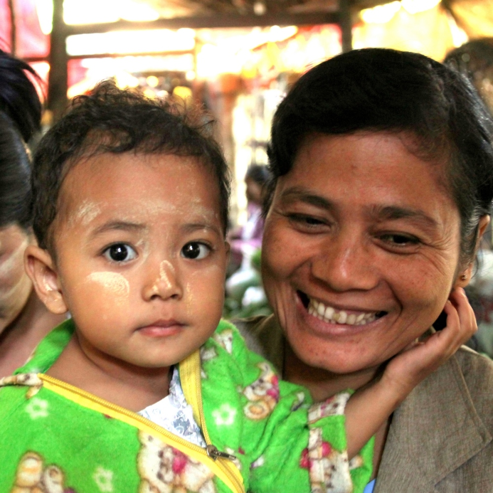 Portrait birman 13