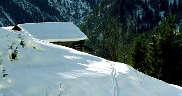 Toit de neige