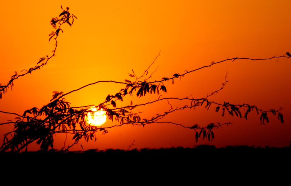 Soleil couchant au Pays du Soleil Levant