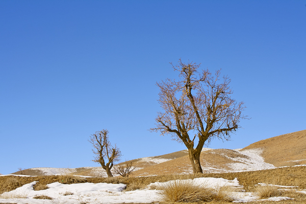 Winter, Lorestan, Iran