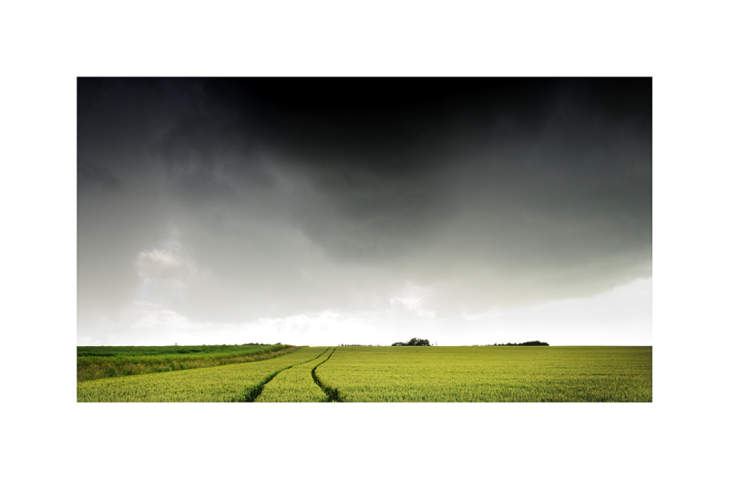 A field with a dramatic sky