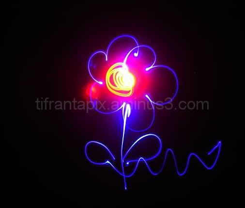 Light Flower