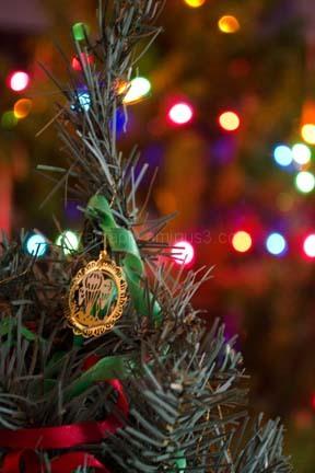 Mini Christmas Tree Bokeh