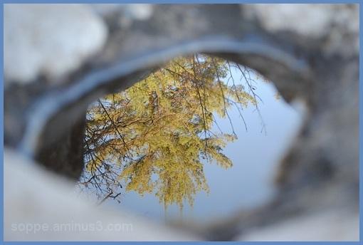 pothole reflection