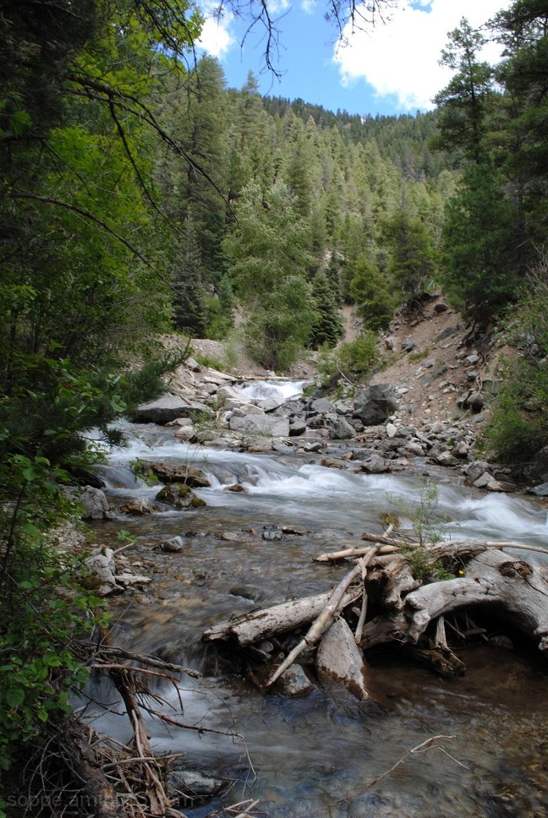 Creek in Taos Ski Valley