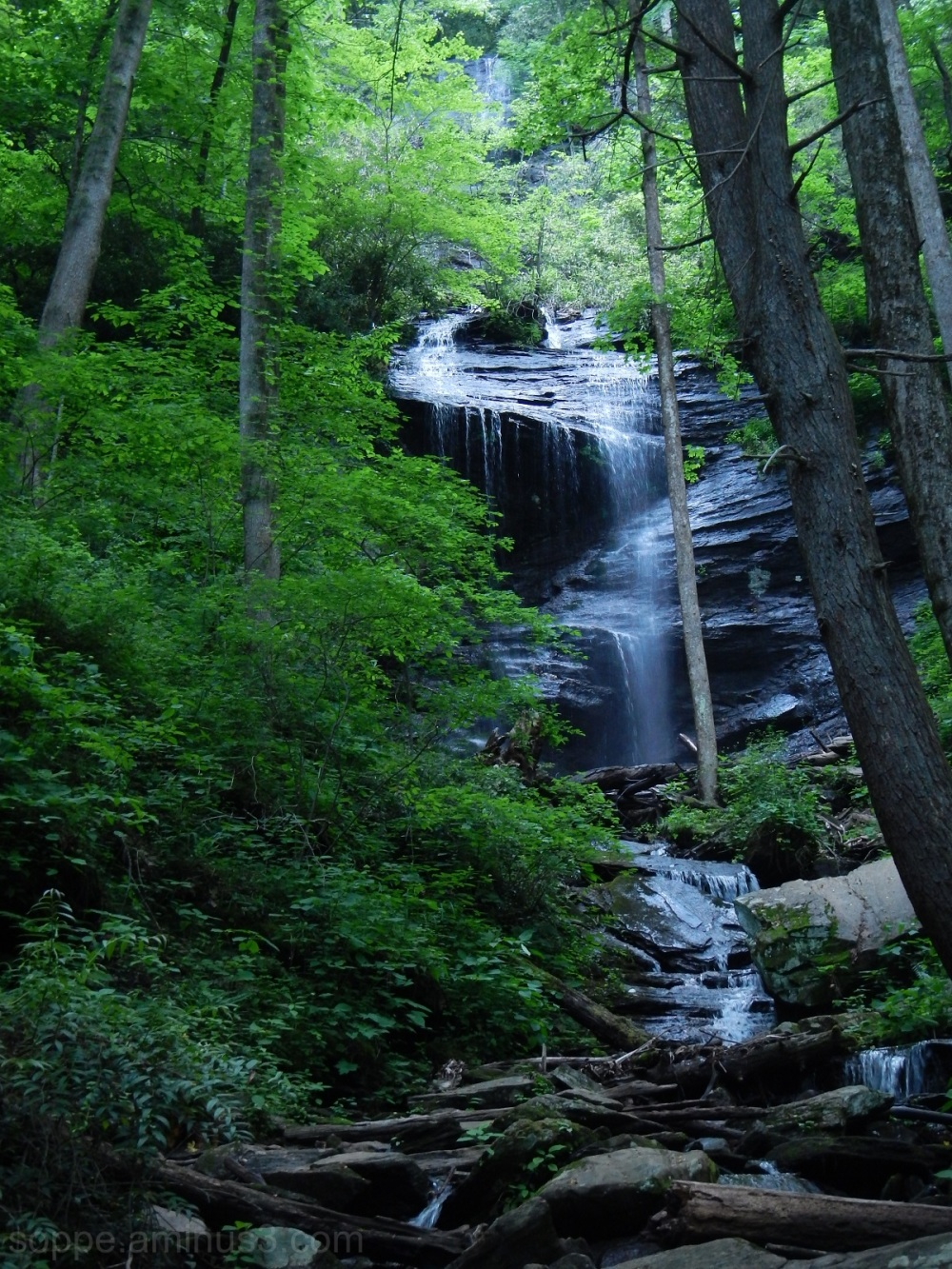 Half of Twin Falls