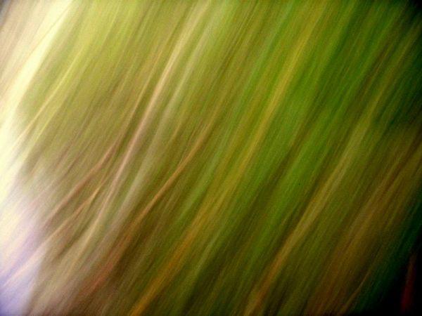 blur grass