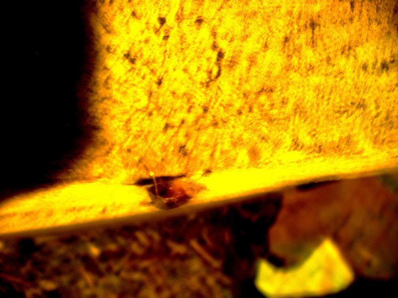 blur yellow boat