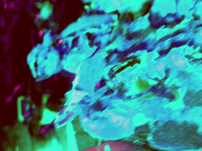 evil blur neon creatures