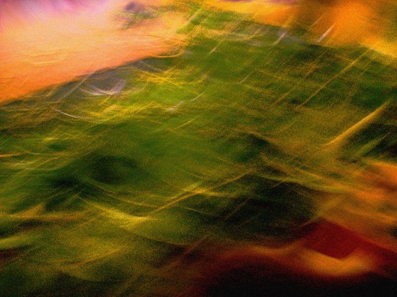 blur leaves