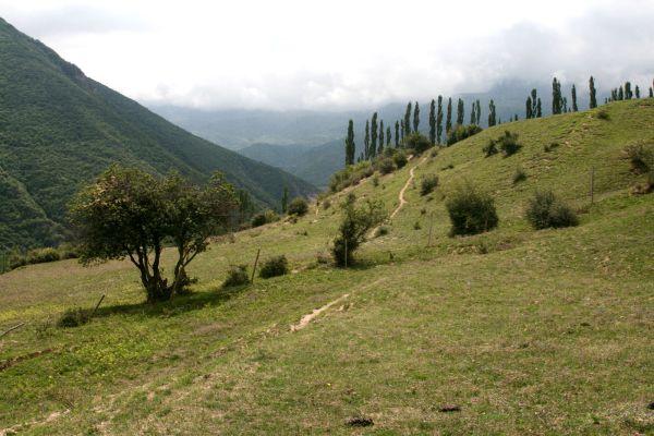 around kandloos valley