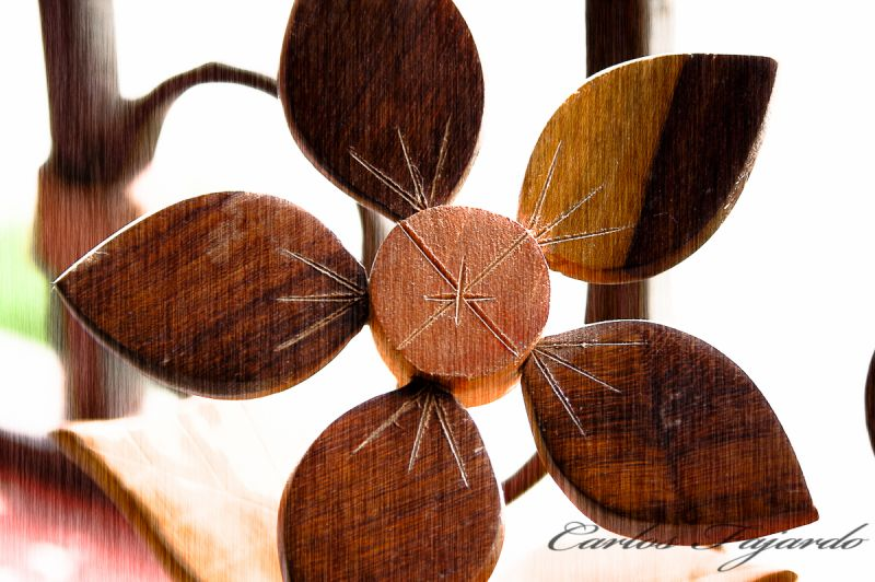Cuban Wood Flower