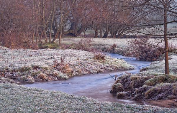 Halfmoon Creek on a Frosty Morning