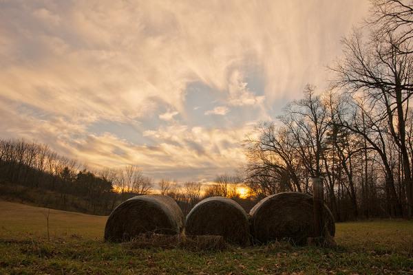 Three Hay Bales at Sunset