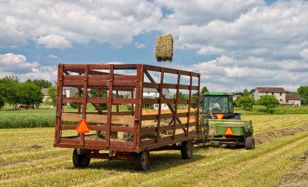 Farming Beside Development