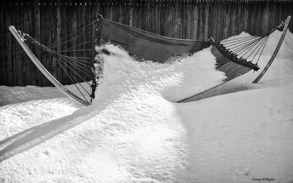 Hammock in Winter