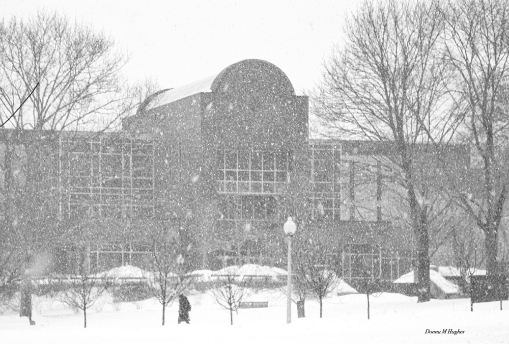 Robert L. Carothers Library