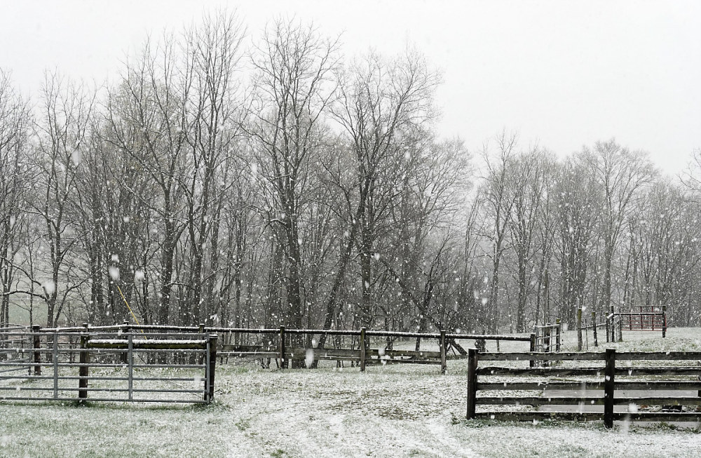Barnyard in Spring Snow Storm