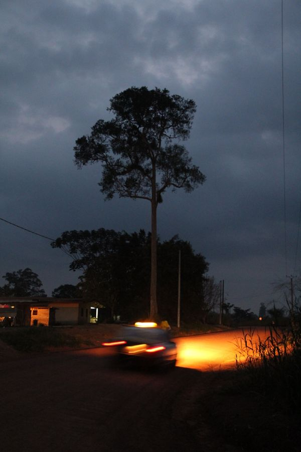 car in the african night