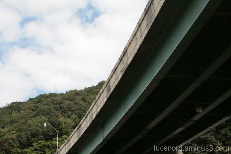 View of Trees and Sky Above Highway Bridge