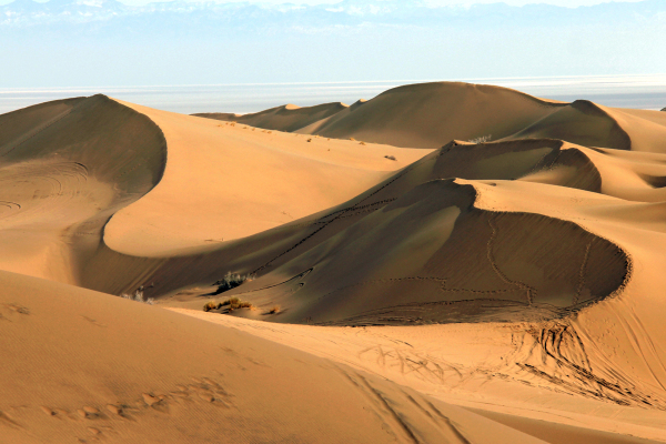 Maranjab Desert-2