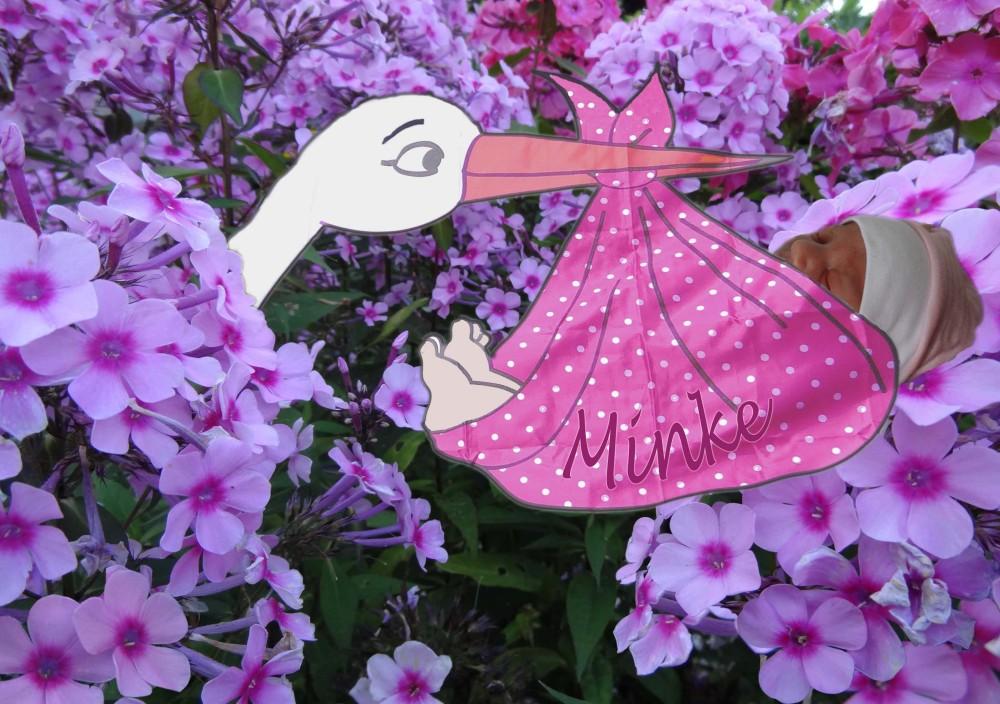 Een roze wolk is Minke