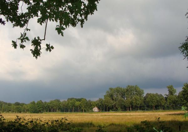 Zomer in Drenthe :1