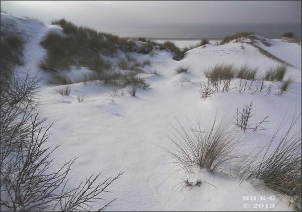 Sneeuw op Voorne