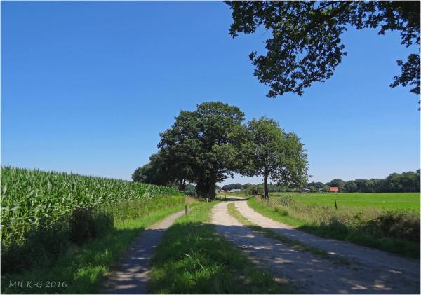 Summerholiday : Drenthe 5