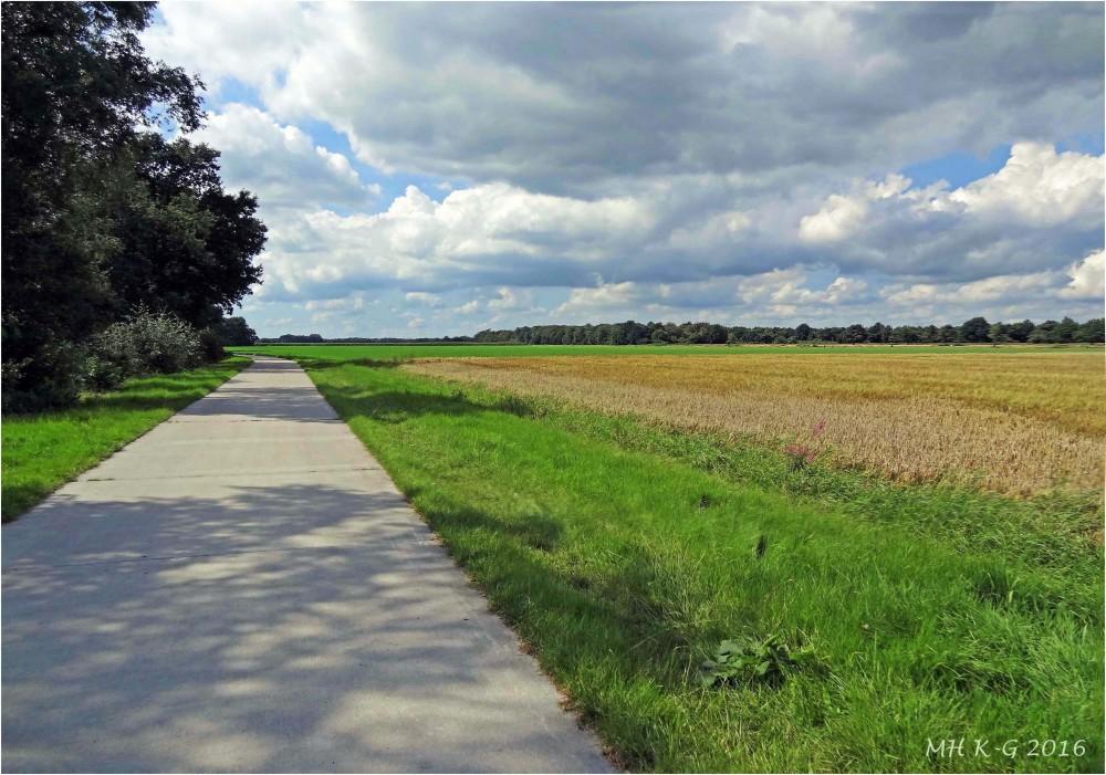 Summerholiday : Drenthe 6