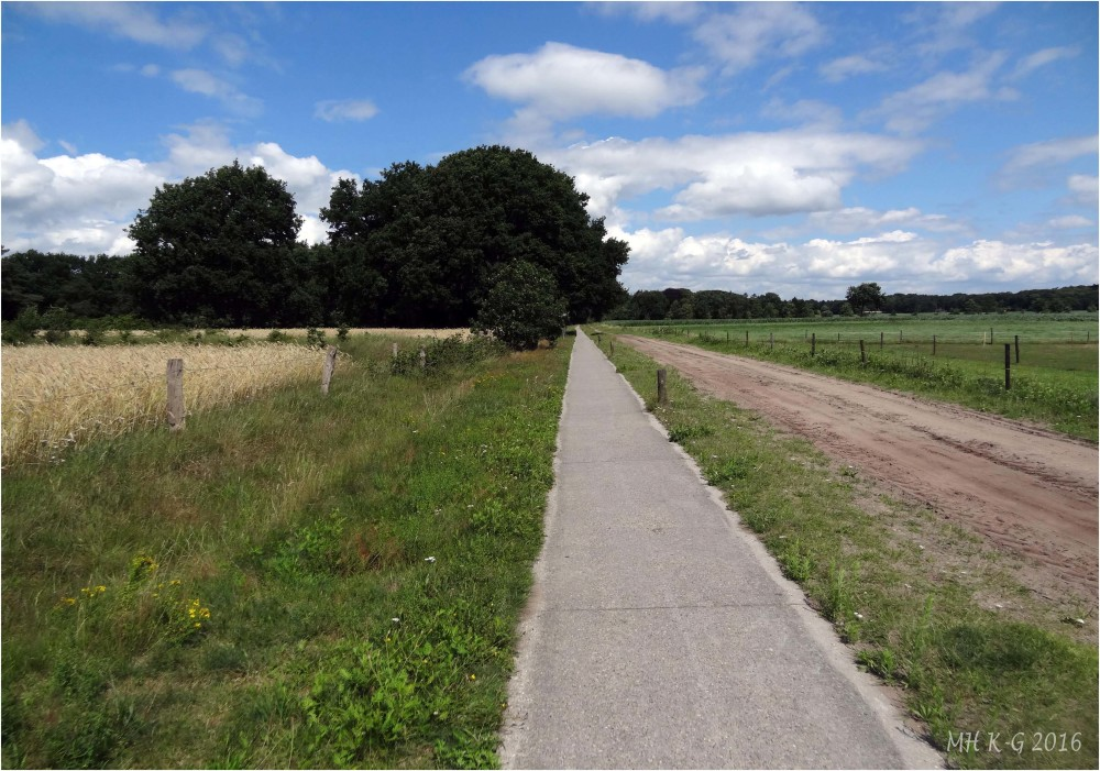 Summerholiday : Drenthe 7