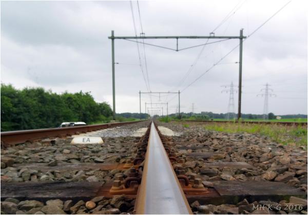 Traintrails