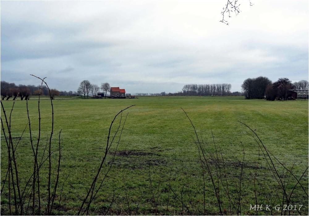 Winter in Voorne`s rural areas : 2/2