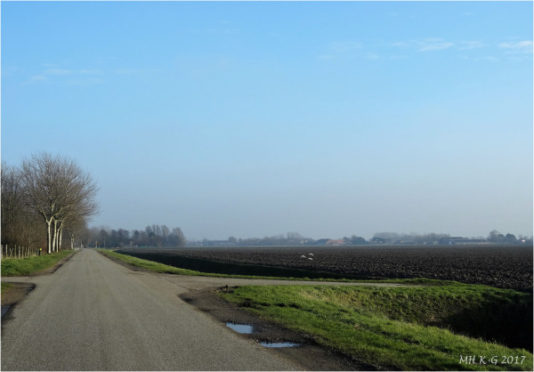 Winter in Voorne`s rural areas : 1/2