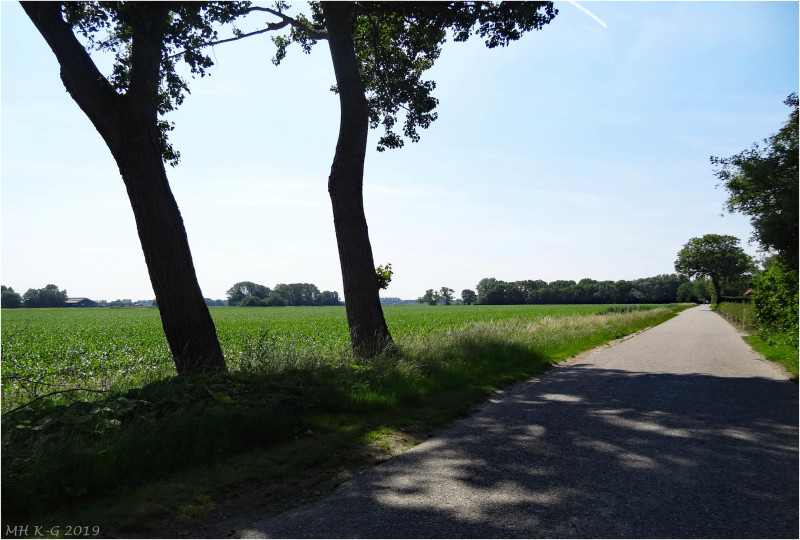 It is hot in Holland