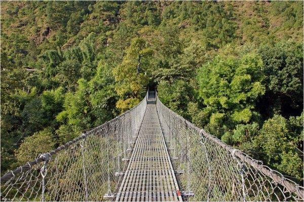 Hanging bridge (archive : 8)
