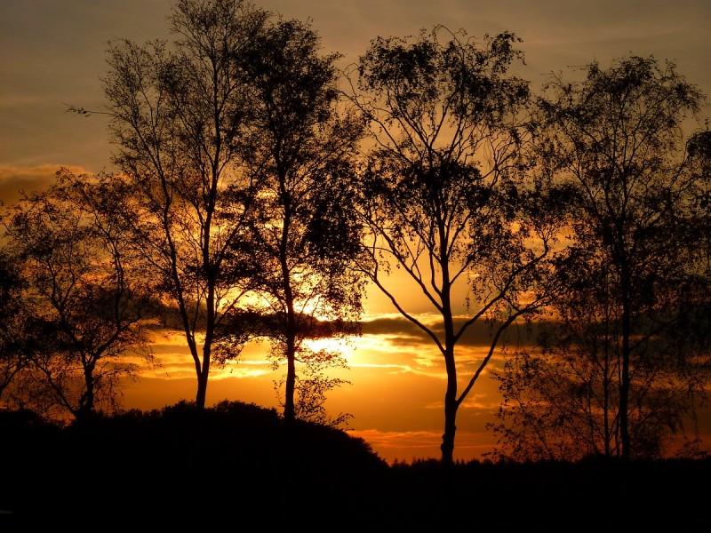 Sunset.....20-10-2011