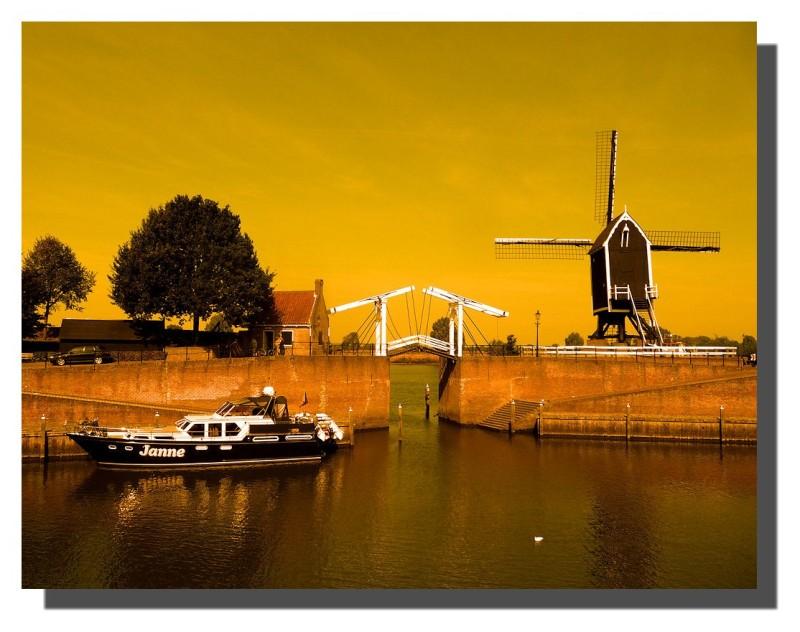 A typical Dutch landscape