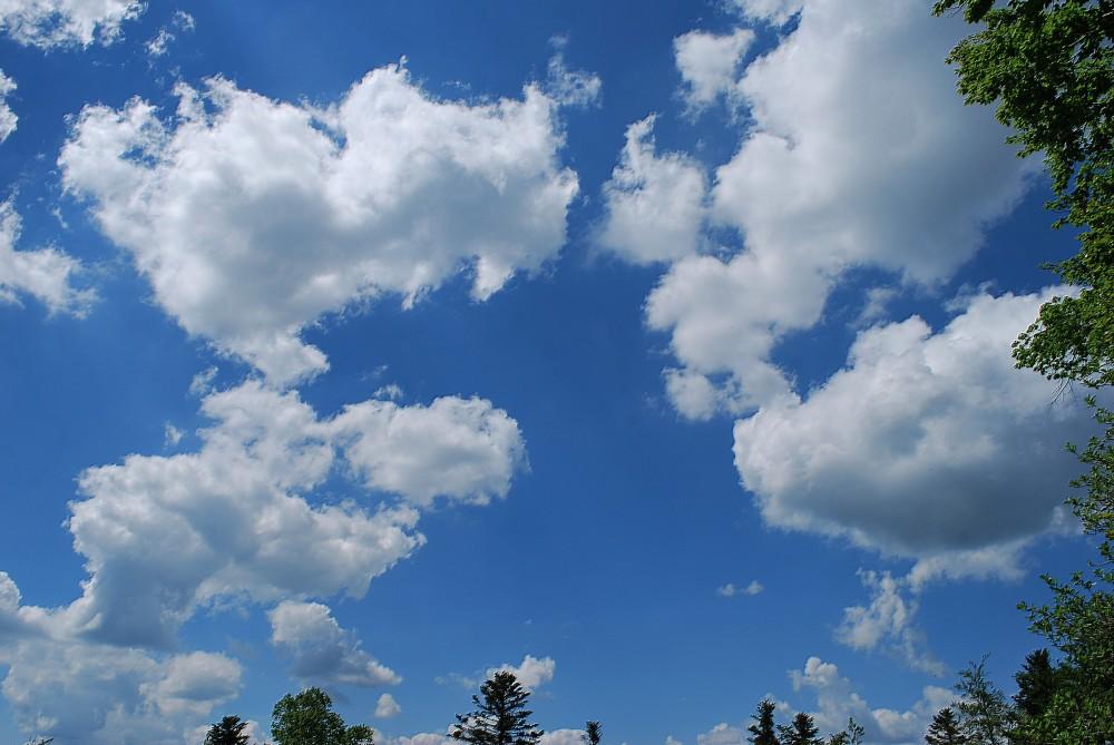 Avoir la tête dans les nuages