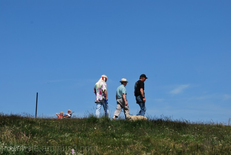 Au sommet du Hohneck
