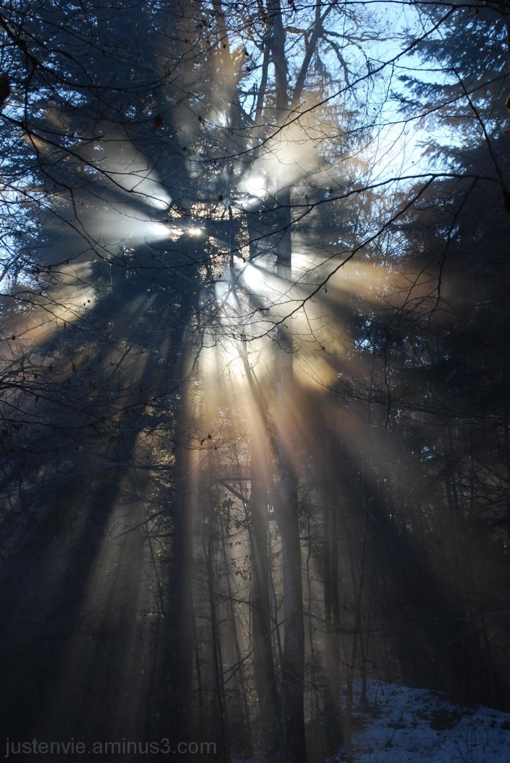 Trouver la lumière